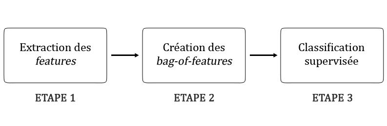 Les trois étapes d'un algorithme de classification d'images