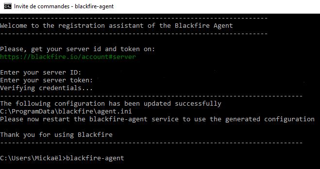 Capture d'écran de l'invite de commande pendant l'installation de l'Agent sur Windows 10