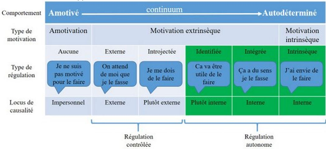 Edward Deci et Richard Ryan établissent un continuum : de l'amotivation à la motivation contrôlée (externe ou fortement influencée par des facteurs extérieurs) puis à la motivation autonome, interne ou intégrée et faite sienne.