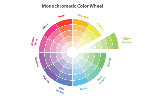 Color wheel organized by colors with different shades.