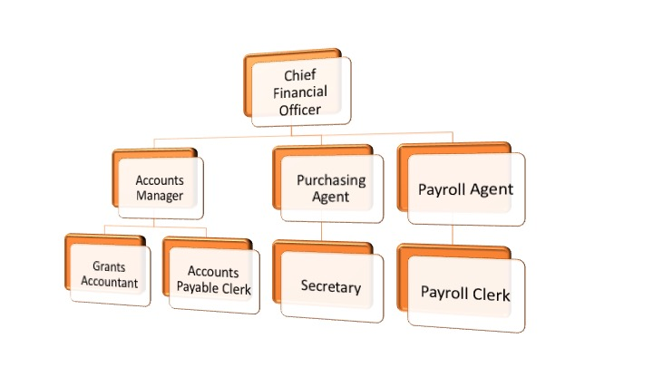 A company organisation chart