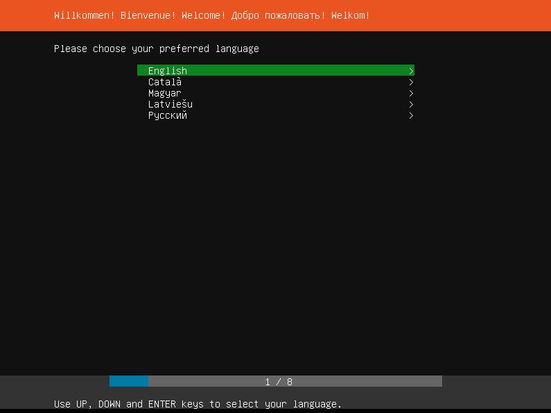 Premier écran du processus d'installation d'Ubuntu Server : choix du langage (en mode texte). Le français n'est pas disponible