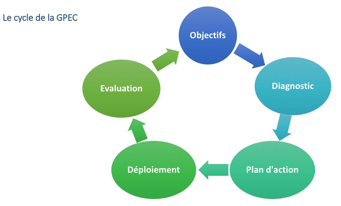 Le cycle de la GPEC