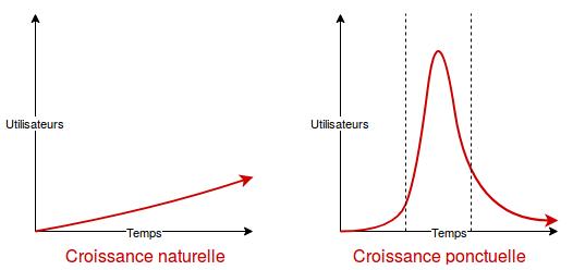 2 schémas : l'un montrant une croissance lente et continue (croissance naturelle), l'autre montrant une courbe de croissance en cloche (croissance ponctuelle)