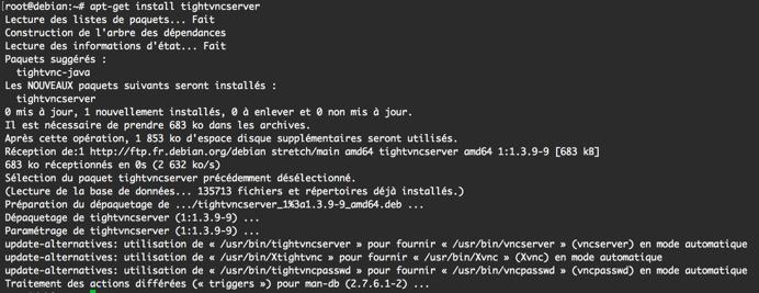 Capture du résultat de la commande apt-get install tightvncserver dans la console.