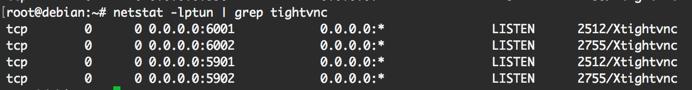 Résultat de la commande netstat -lptun | grep tightvnc dans le terminal.