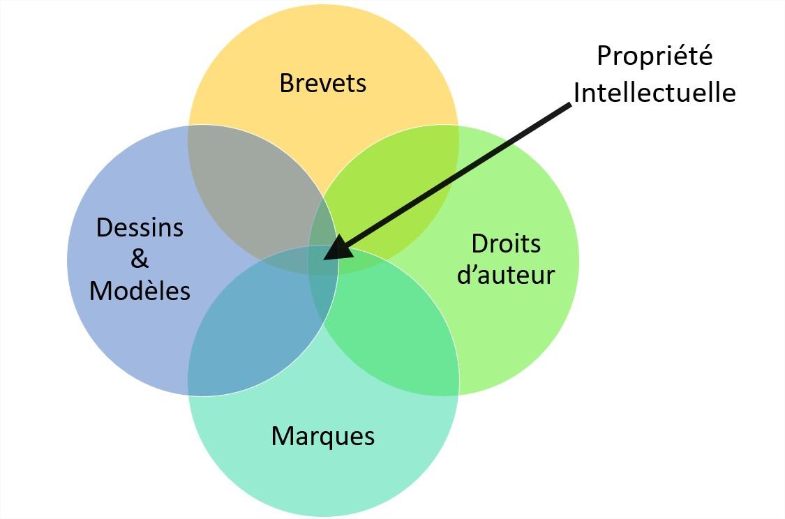 Schéma sur la propriété intellectuelle
