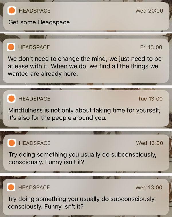 Screenshots of notifications range from