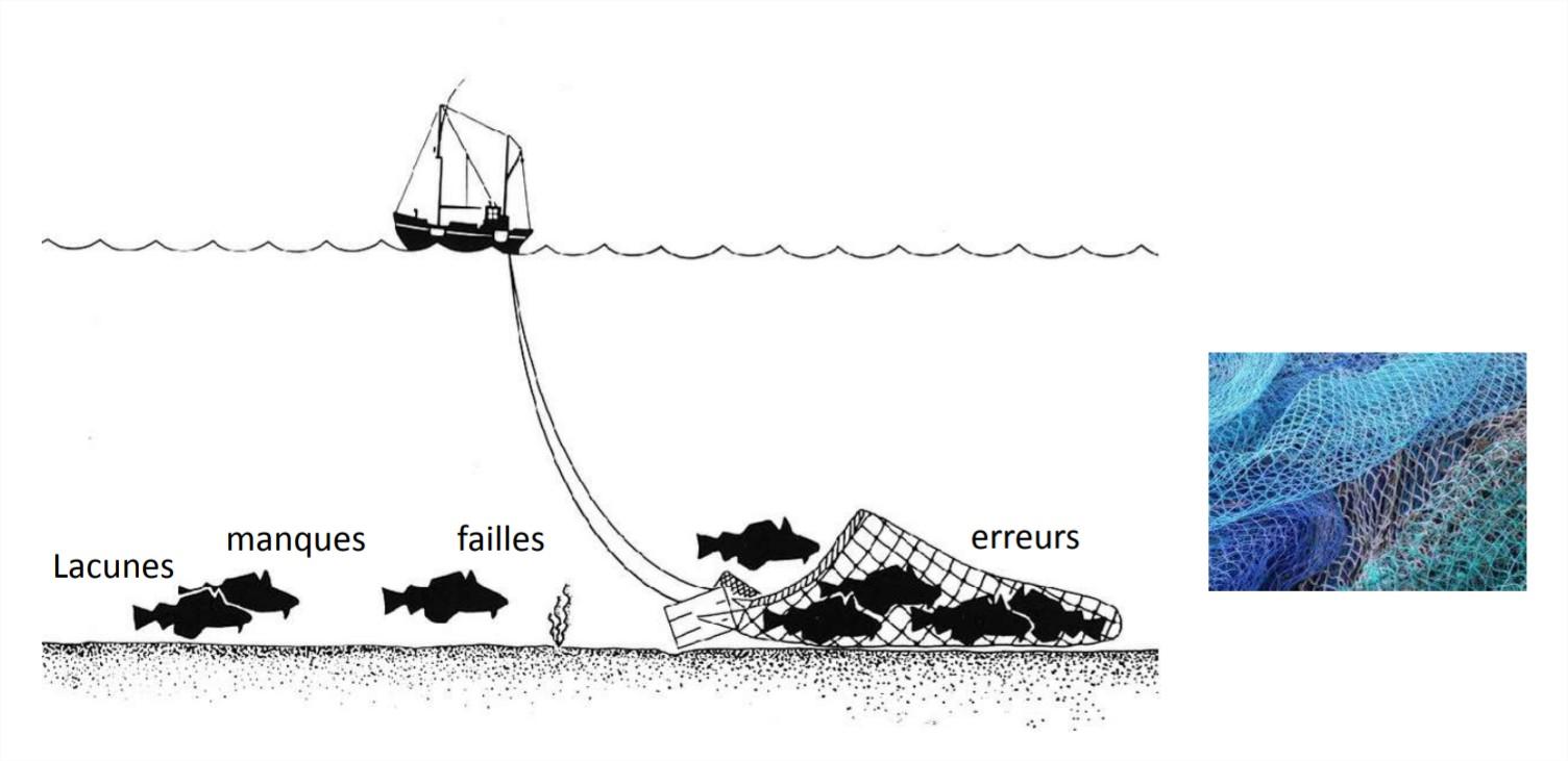 Les activités de vérification et de validation s'organisent alors comme une pêche !