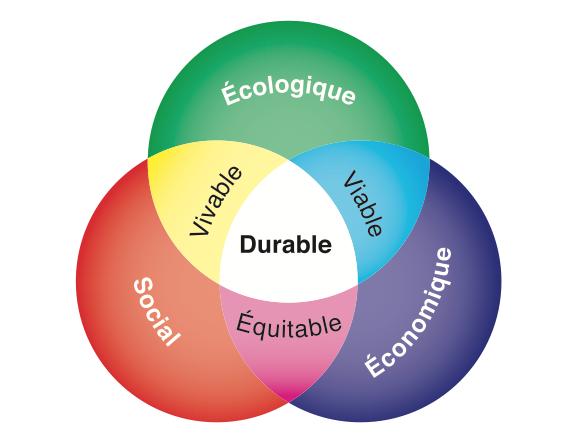 Les 3 piliers du développement durable : social, économique et écologique