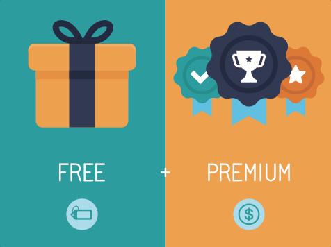 Représentation schématique du modèle freenium de business model, décrivant les deux types de clients : celui qui paye pour le service et celui qui a un accès gratuit.