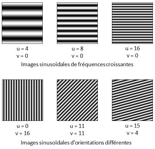 Exemples d'images sinusoïdales