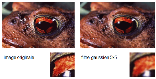 Exemple : filtre gaussien (image : Annick Leroy)