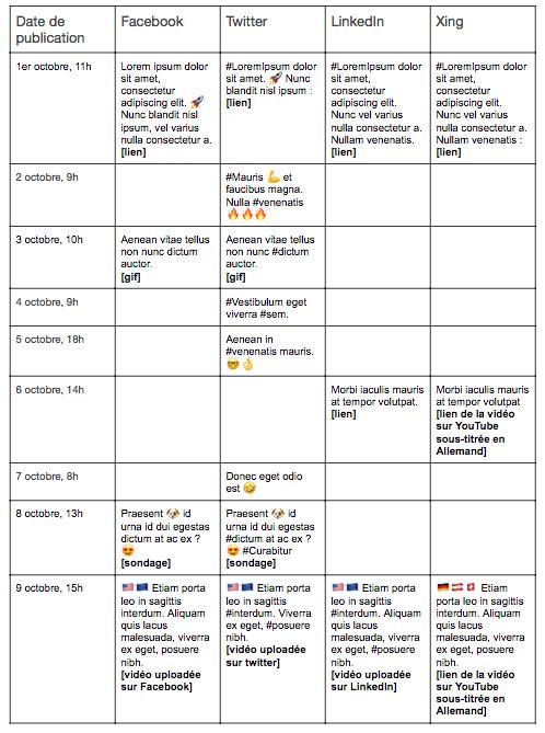 Tableau de publication des contenus déclinés sur les différents réseaux sociaux.