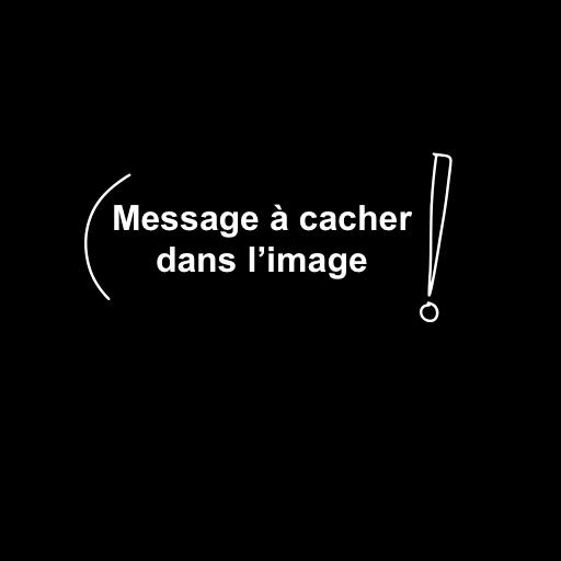 Image du message à cacher dans une autre image