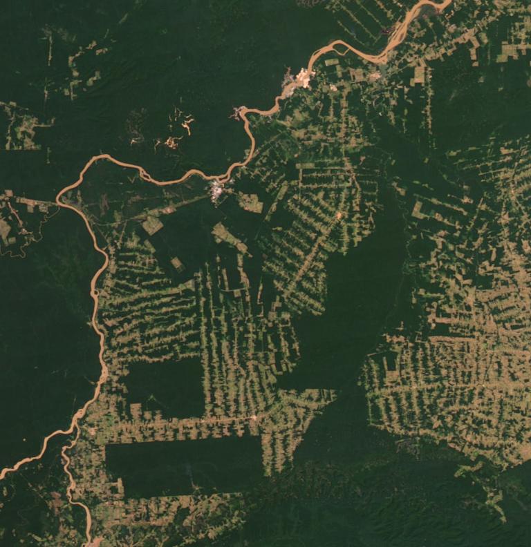 Amazonie en 2012 (source NASA's Earth Observatory)
