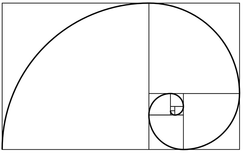 "La ""spirale d'or"" (ou spirale de Fibonacci)"