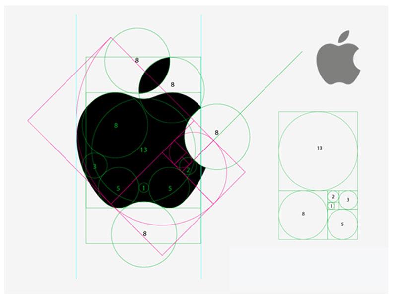 Représentation du logo d'Apple avec dessiné différentes dimensions et proportions.
