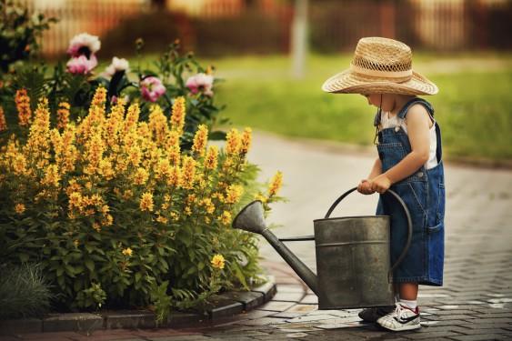 Toddler watering flowers