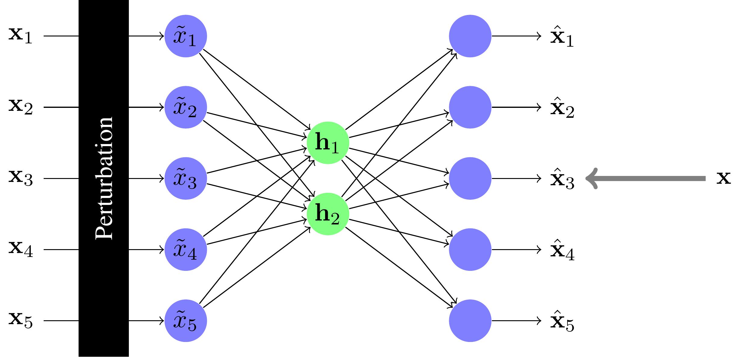 Apprendre un réseau under-complete en ajoutant de la perturbation
