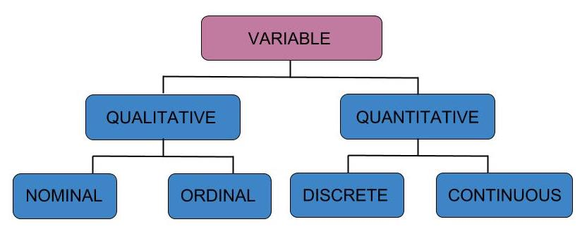 Types of variables