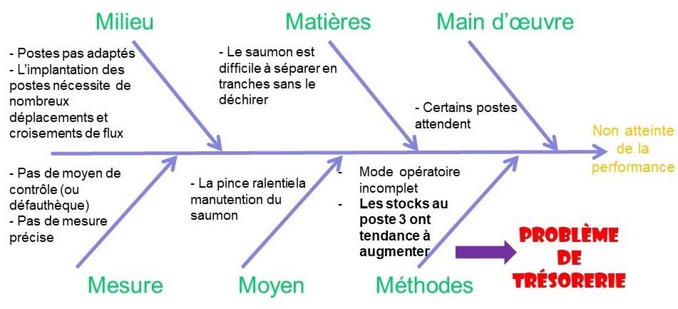 Diagramme d'Ishikawa des causes constatées sur l'analyse du processus