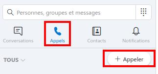 Pour passer un appel dans Skype - Capture d'écran