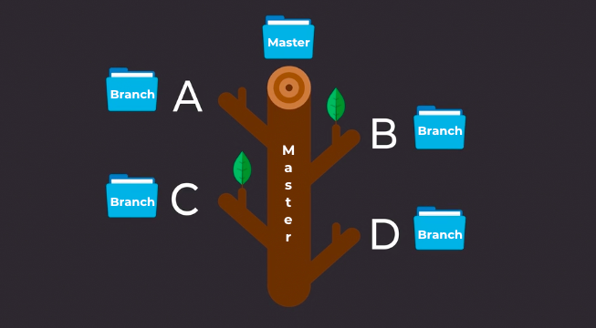 Your Git branches