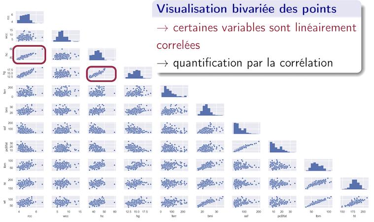 Tracé par paires de variables des données biologiques
