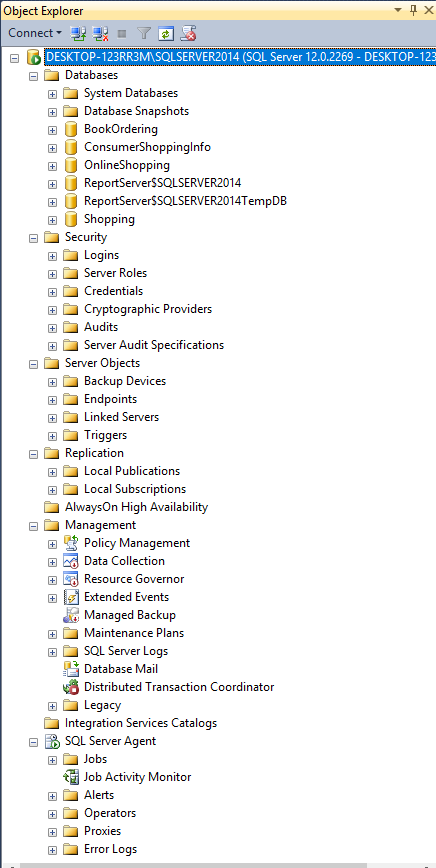 SQL Server DBMS