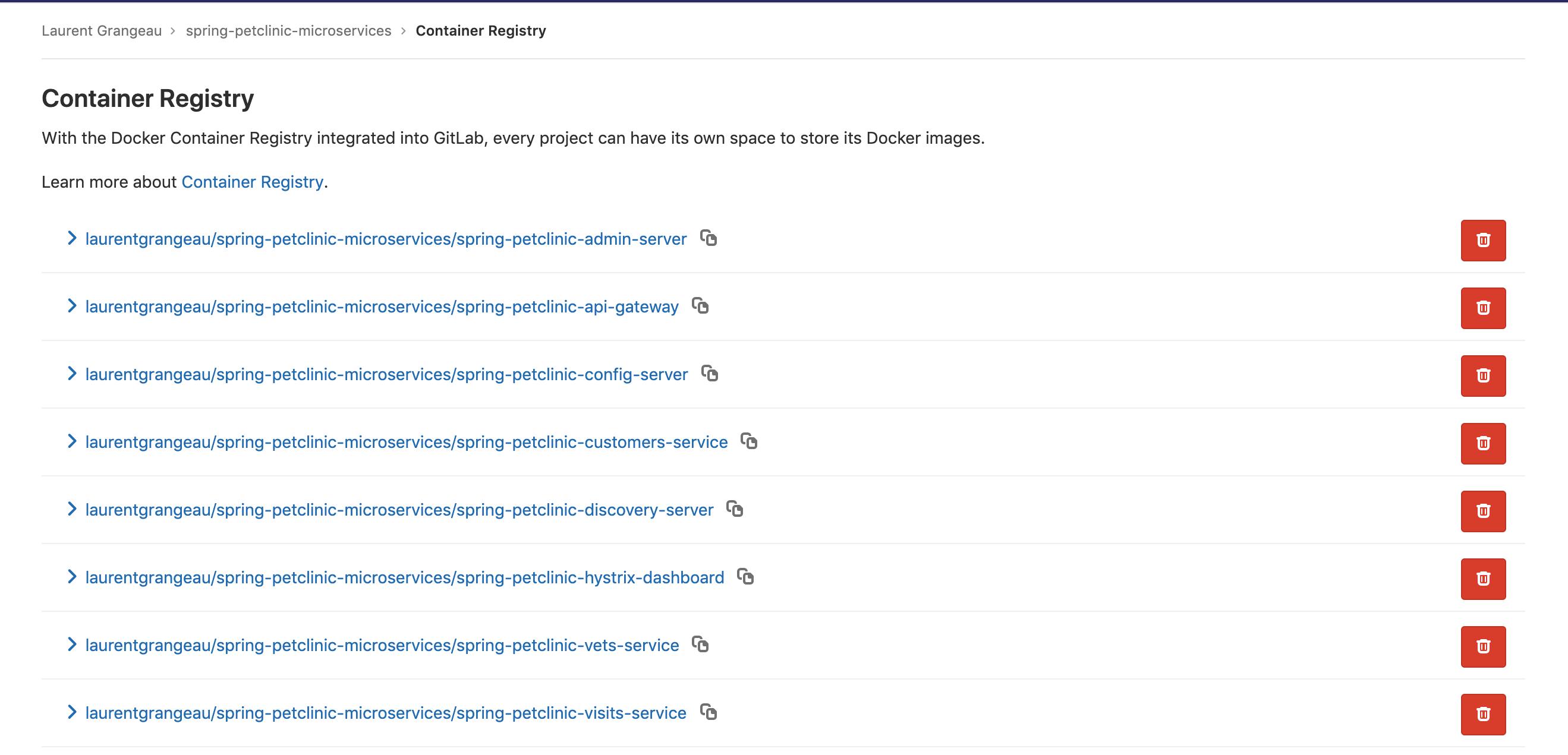 Registry Gitlab de votre projet avec les packages du pipeline