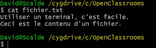 Le résultat de la commande cat fichier.txt sur mon terminal