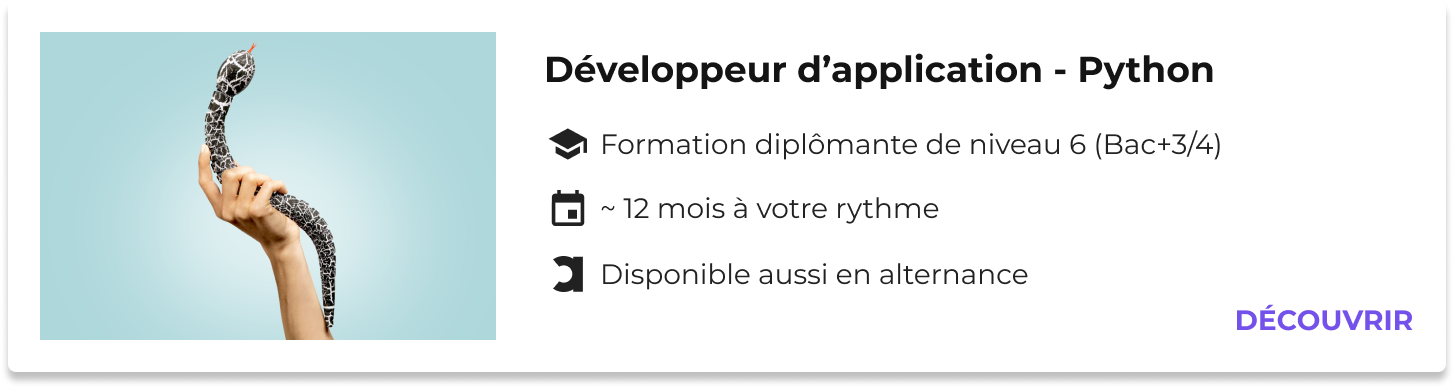 formation développeur d'application python