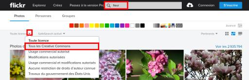 Une recherche de photos de fleur sous licence creative commons sur Flickr