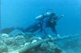 Photographie représentant un plongeur à proximité d'un câble sous-marin