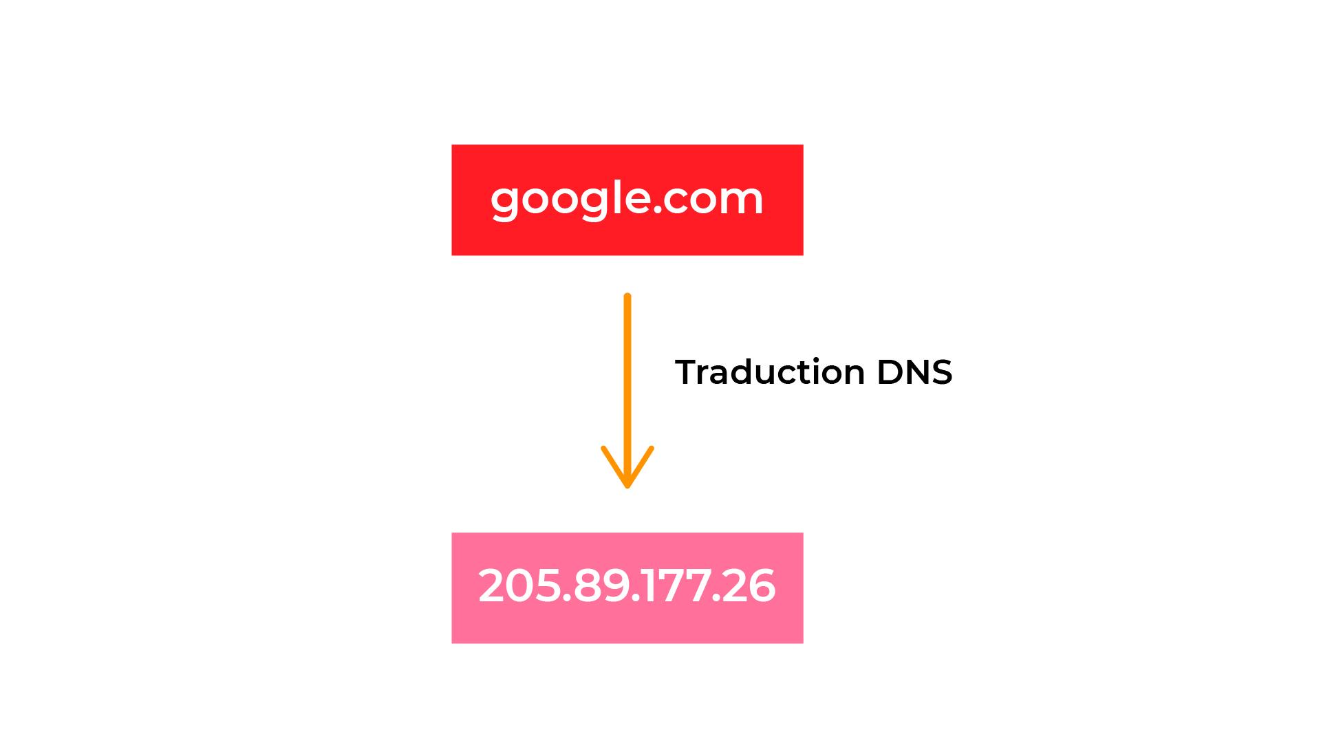 Le DNS permet de traduire le nom d'hôte en adresse IP.