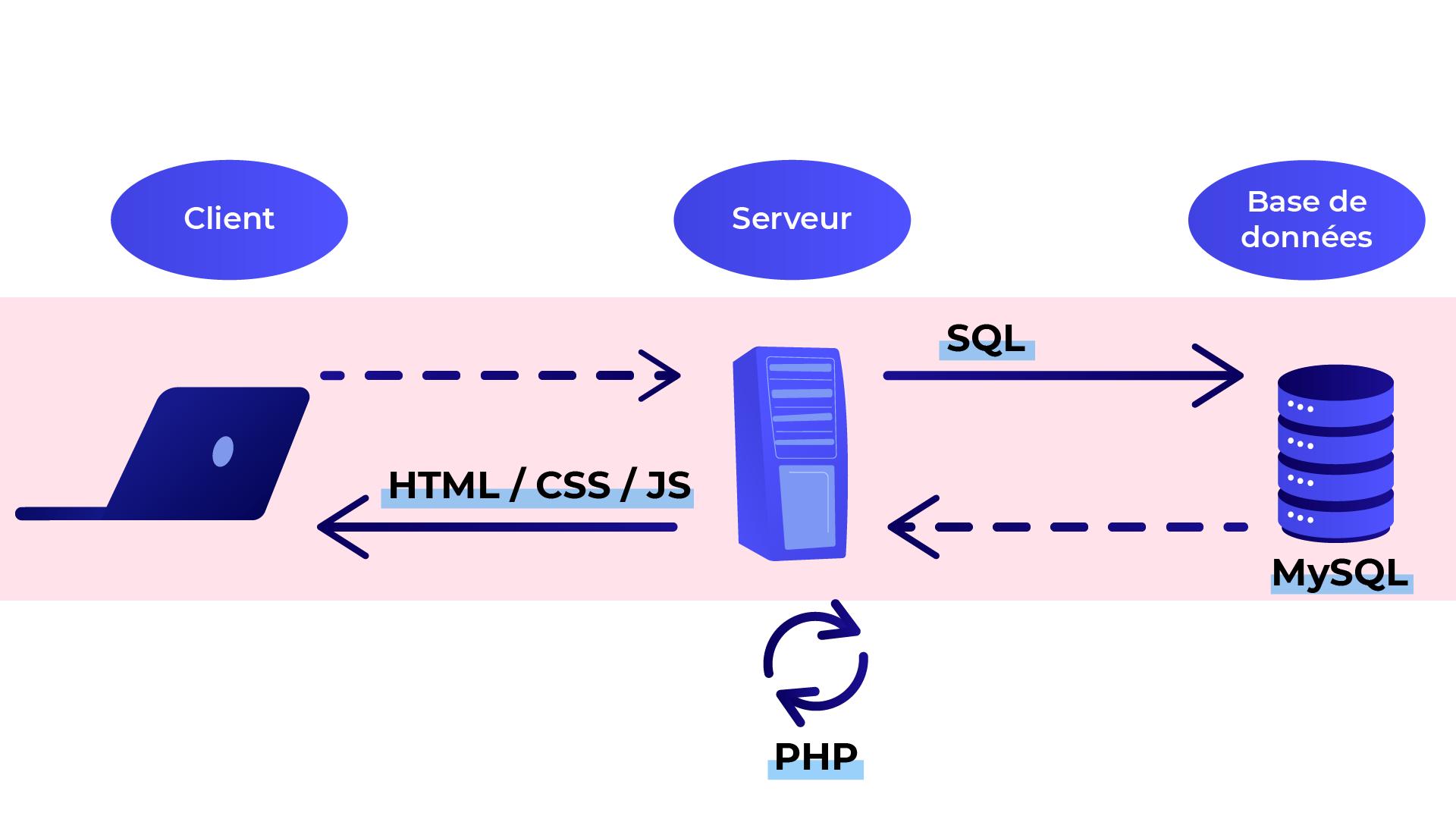 Le serveur utilise le SQL pour communiquer avec la base de données. Le serveur utilise ensuite le langage serveur PHP pour générer la page, et utilise les langages HTML, CSS ou JS pour l'envoyer au client.
