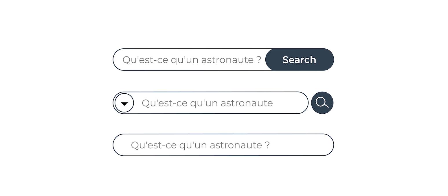 Trois éléments de recherche. La première contient du texte input, un bouton de recherche qui dit