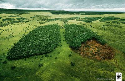 Représentation de la forêt Amazionniene en forme d'un poumon.
