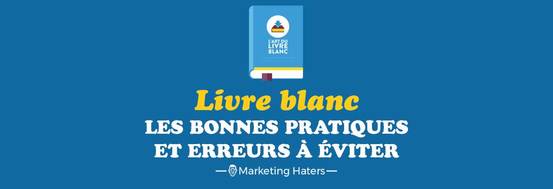 Screenshot d'une bannière promouvant un livre blanc sur le marketing