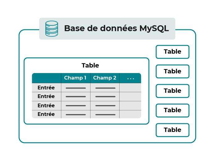 Organisation schématique d'une base de données MySQL : une base de données est constituée de plusieurs tables. Chaque table contient des entrées classées par champs.